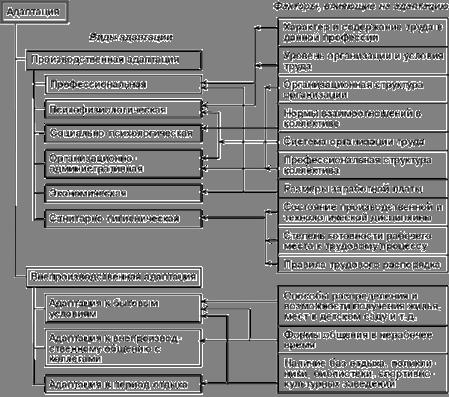 Менеджмент Процесс адаптации как важнейший элемент системы   выполнения разовых общественных поручений для установления контактов нового работника с коллективом подготовки замены при ротации кадров проведения в