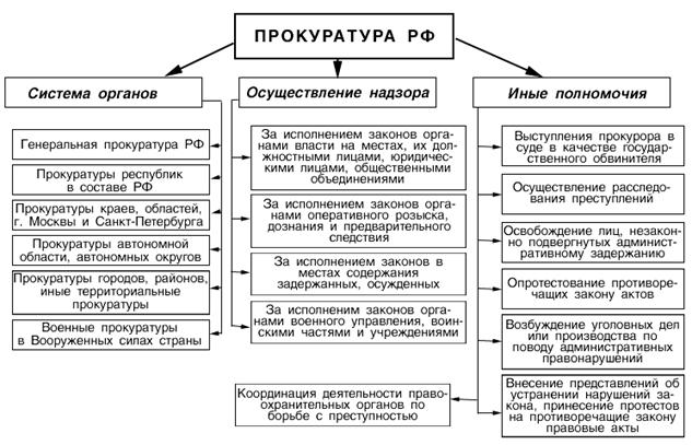 Законодательная Власть Рф Реферат strongwindie Законодательная Власть Рф Реферат