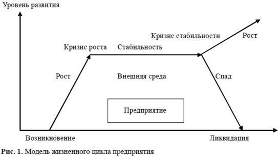 Курсовая работа жизненный цикл и стадии развития организации 5748
