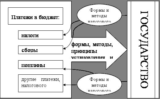 Финансовые науки Налоговая система Украины Курсовая работа  Взаимосвязь элементов налоговой системы