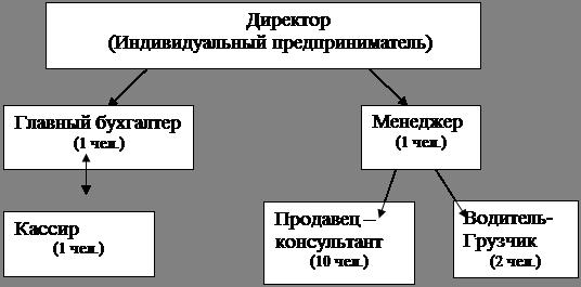 Маркетинг Анализ финансового состояния торгового предприятия ИП  Рис 1 Организационная структура ИП Одежда