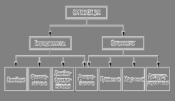 Менеджмент Организационная структура предприятия и оценка ее  Связь между типом организации и принципами построения организационных структур