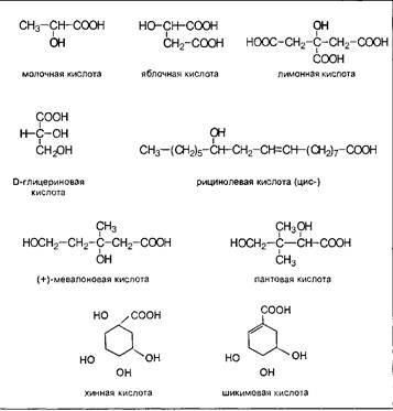 Биология Простейшие бифункциональные природные соединения  К примеру молочная кислота образуется при молочнокислом брожении лактозы в виде рацемической смеси тогда как в животном организме в результате гликолиза