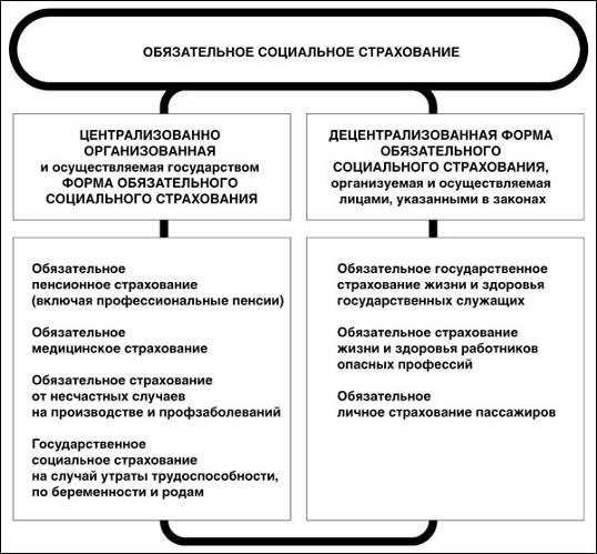 Банковское дело Проблема социального страхования и ее развитие в   biota ru files images magazines yashin1 4za07