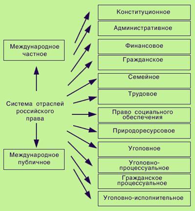 Государство и право Система права Реферат Учил Нет  Система отраслей российского права