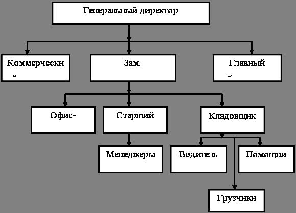 Финансовые науки Управление дебиторской и кредиторской  ООО Рос Таргет имеет линейную организационную структуру управления которая представлена на рис 2