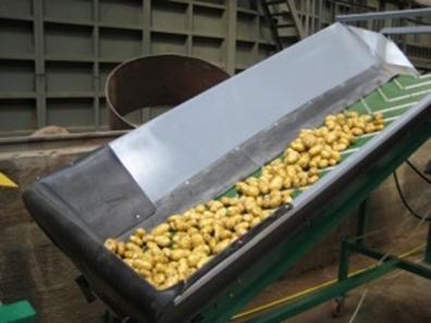 Кулинария Производство этилового спирта из картофеля Курсовая  Подработка картофеля заключается в отделении и удалении мусора от сырья мойке и дроблении