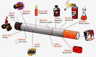 Курение и употребление алкоголя реферат 3528